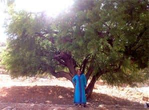 malika at uncle hamids argan trees