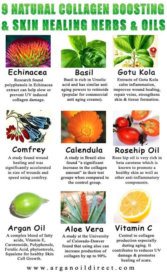 Image Result For Foods For Healthy Skin Collagen