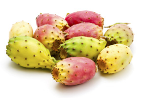 barbary fig cactus fruits