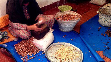 Berber women making cosmetic Argan Oil in cooperative