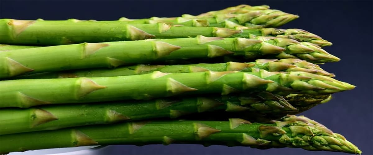 Asparagus Salad With an Argan Oil Dressing Recipe
