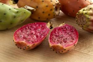 opuntia-ficus-indica-cactus-fruit-seeds-500pxw